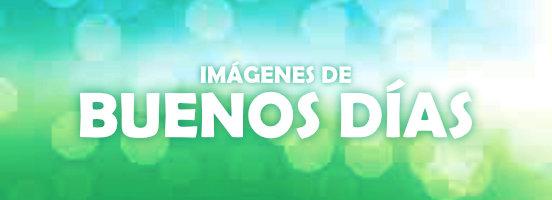 Buenos Dias Imagenes Gratis Fotos Y Gifs Con Frases