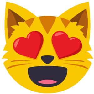 cara de gato enamorado