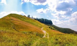 paisaje rural con camino