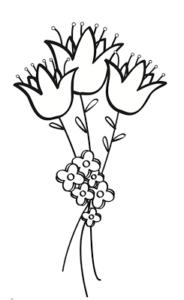 ramo de tulipanes para dibujar