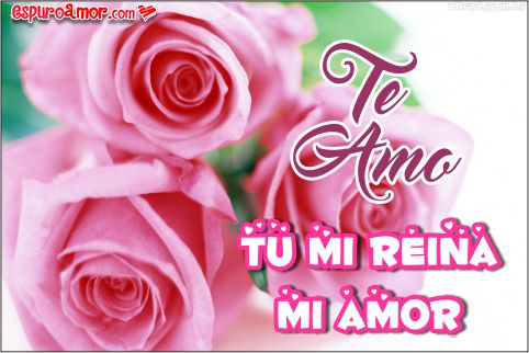 Imágenes De Flores Y Rosas Con Frases De Amor Hermosas