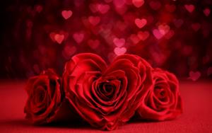 rosas con forma de corazon para portada